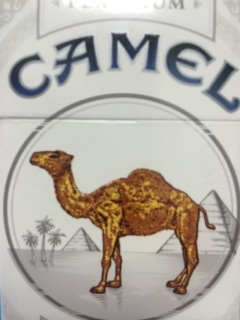 CAMEL PLATINUM BOX FSC