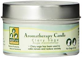 CANDLE AROMATHERAPY SAGE EA