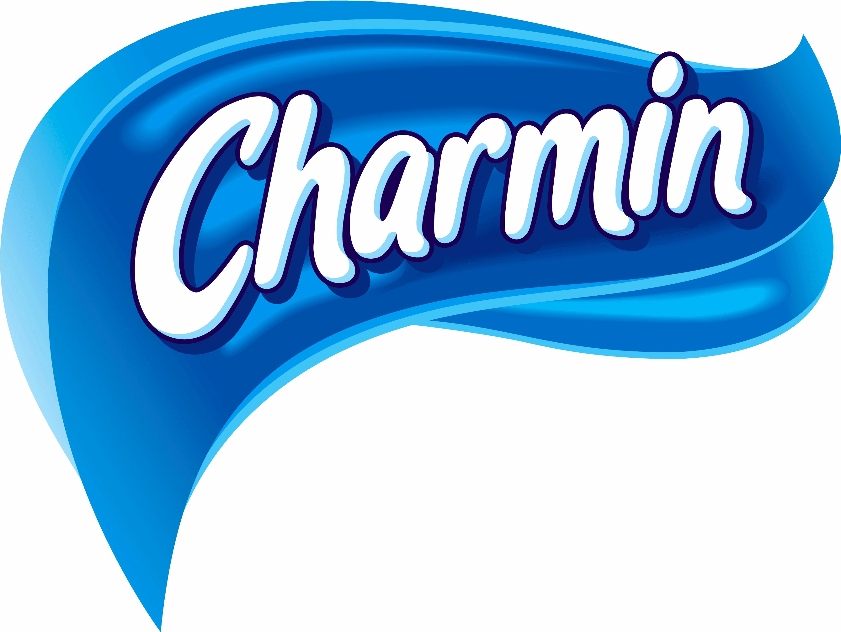 TOILET TISSUE CHARMIN CASE