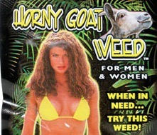 SEX HORNEY GOAT WEED 24CT
